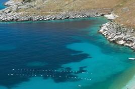 Dolny Adriatyk